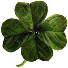 220px-Four-leaved_clover2